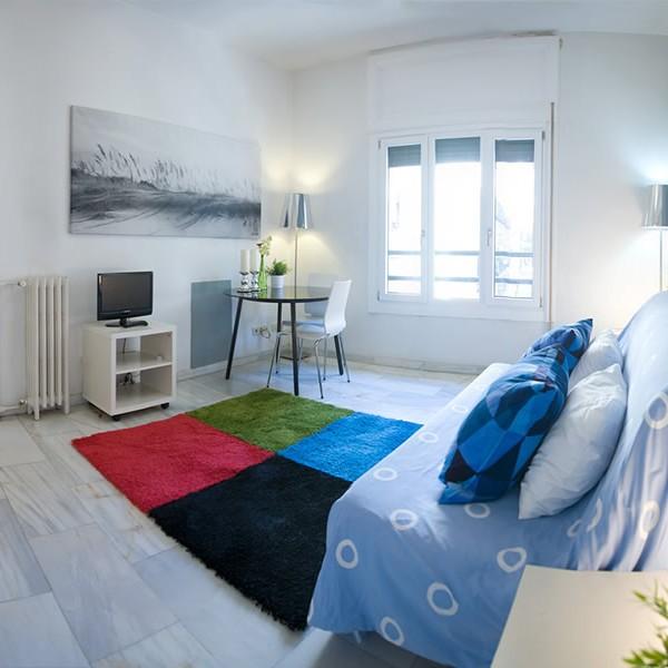 Apartamentos-Estudios-Alquiler-Madrid-26